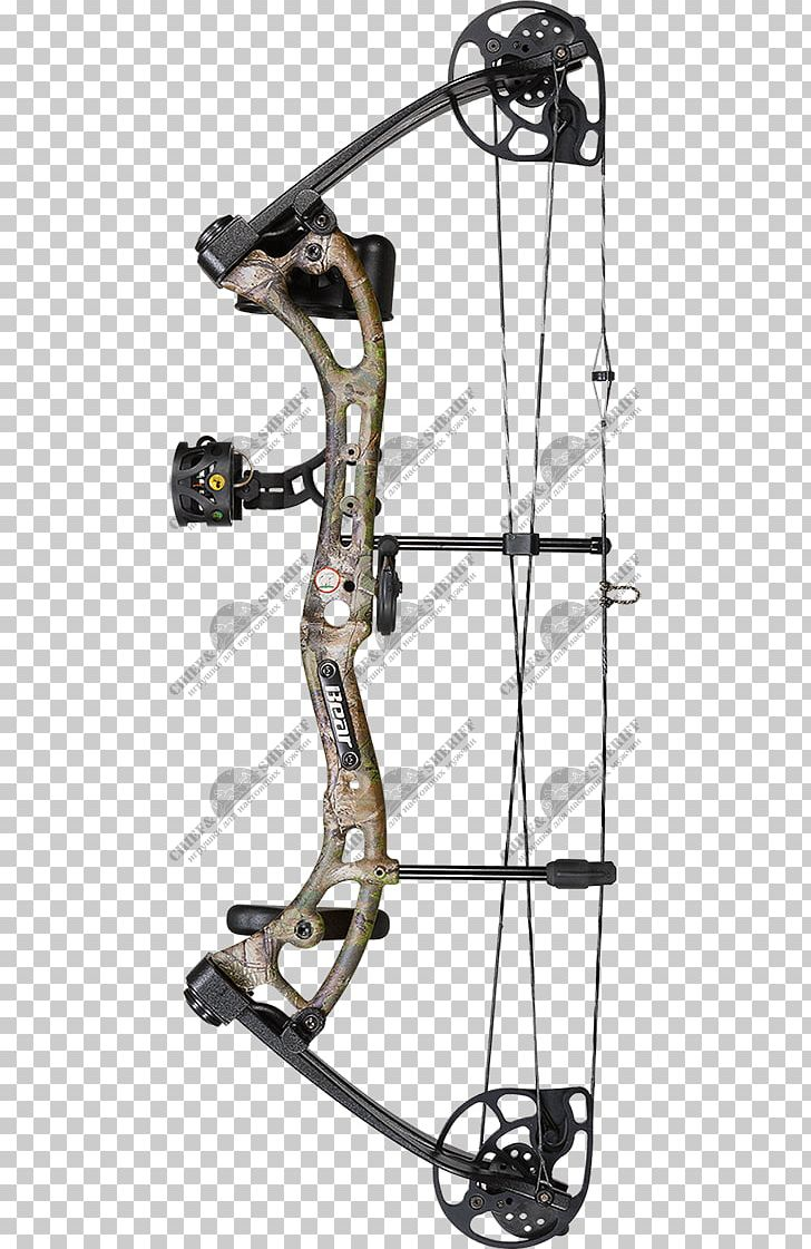 Bear Archery Compound Bows Bow And Arrow Hunting PNG.