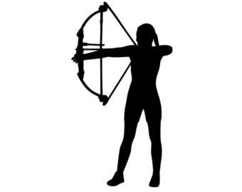 Archery arrows.
