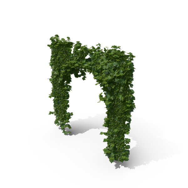 Ivy Archway PNG Images & PSDs for Download.