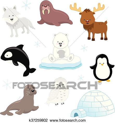 Arctic Animals Clipart.