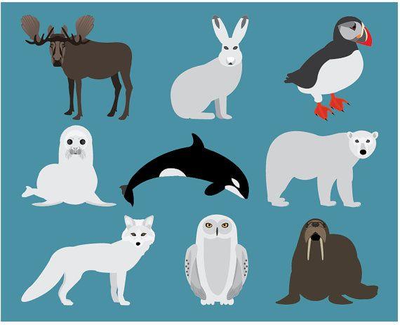 Arctic Animals Clipart North Polar Wildlife Antarctica Moose Puffin.