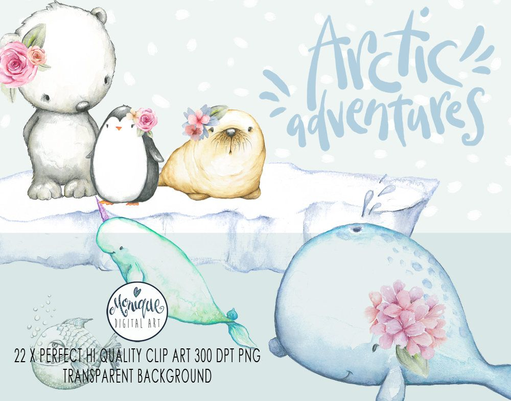 Arctic Animals Clipart,Watercolor whale,walrus, seal.