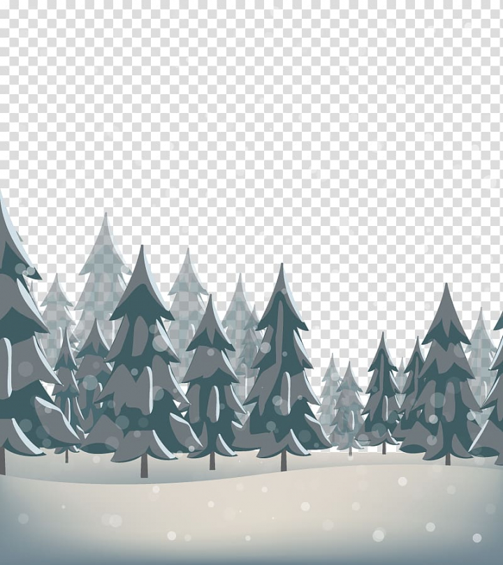 Snow Pine, forest transparent background PNG clipart.