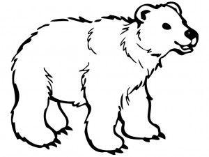 Use printable polar bear with Artic Lesson Plan under art.