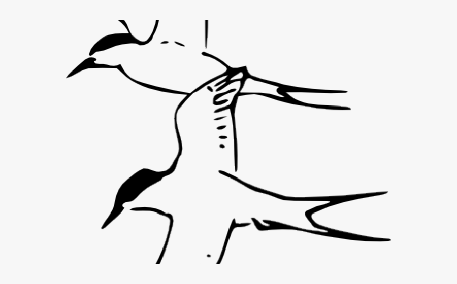 Tern Clipart Number 2.
