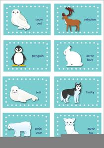 Free Arctic Animal Clipart.
