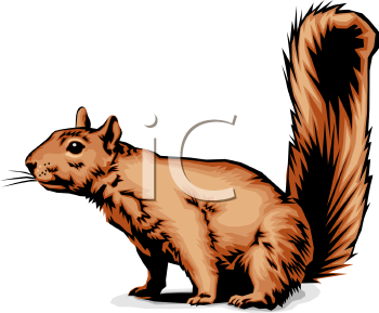 Ground squirrel clipart.