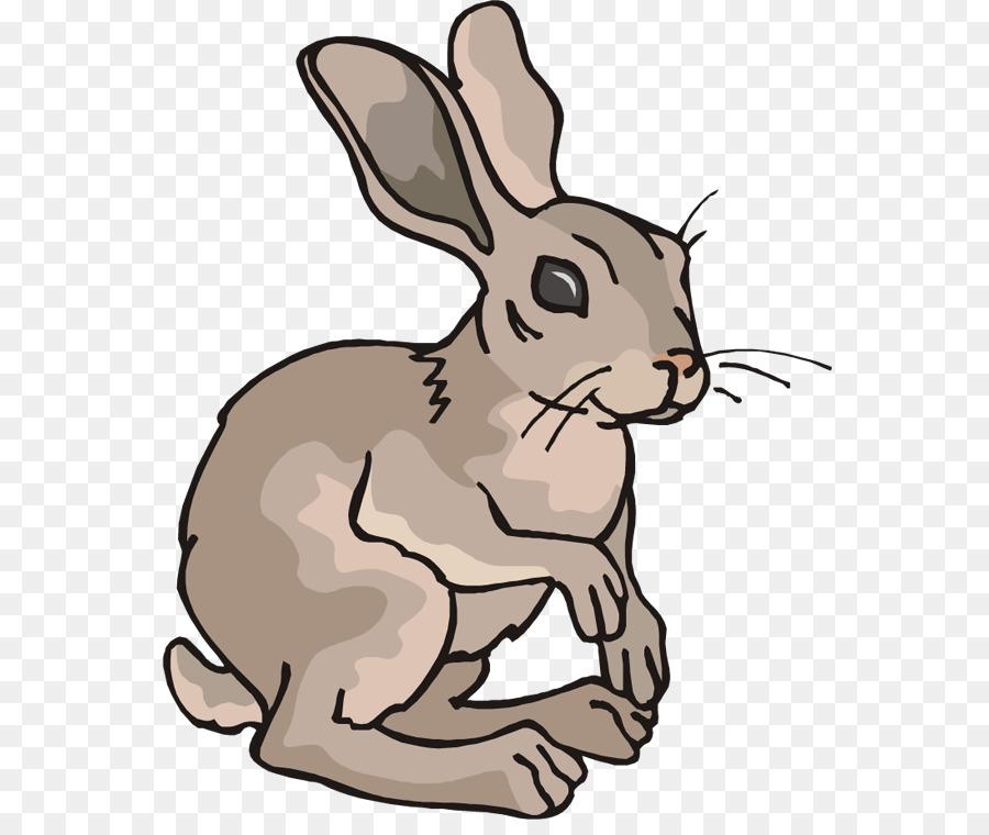 Arctic hare Rabbit Cartoon Clip art.