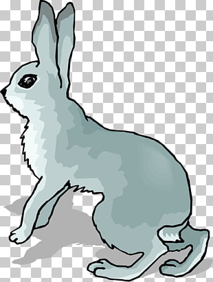 39 arctic Hare PNG cliparts for free download.