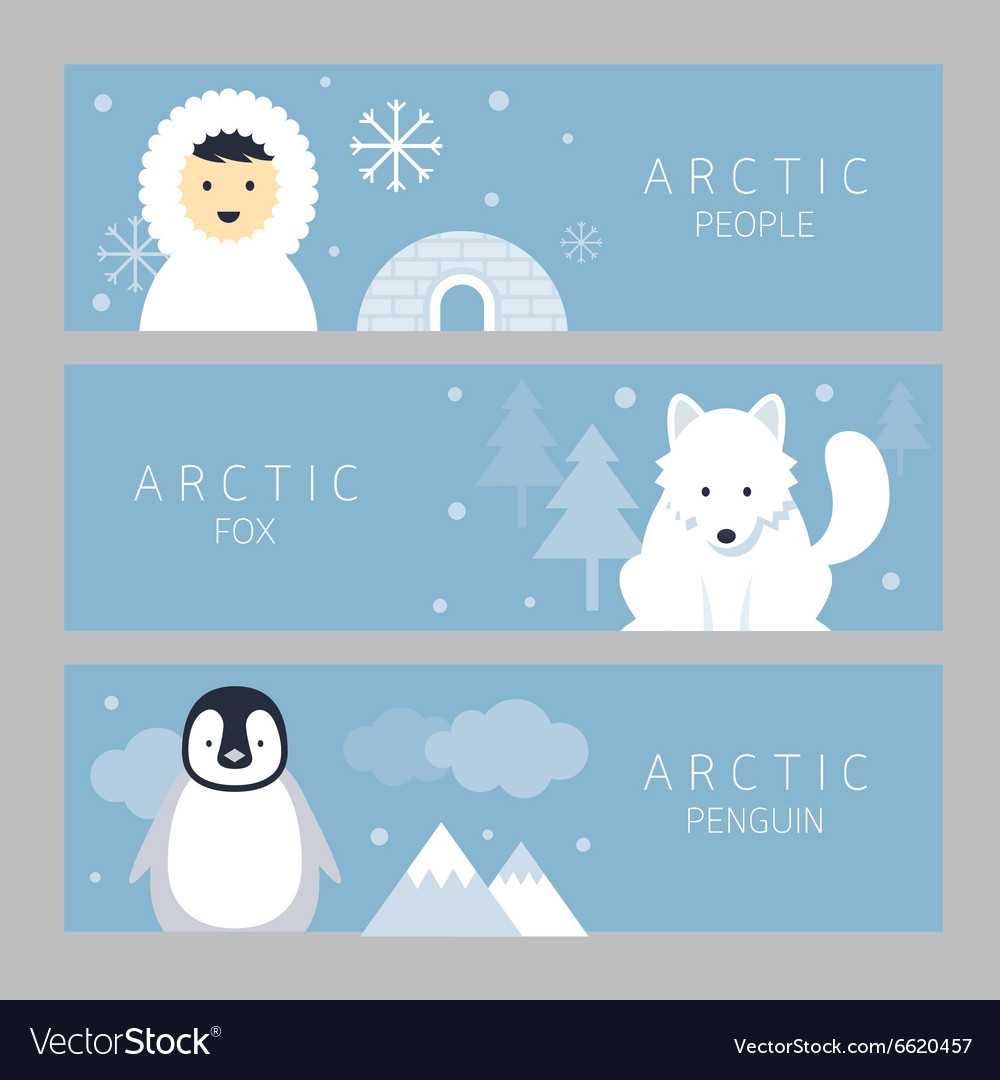 Arctic Banner People Fox and Penguin.