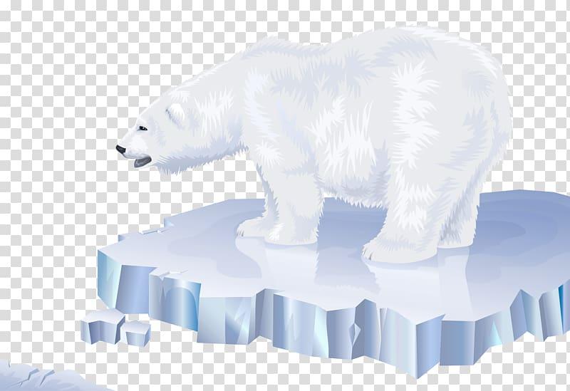 Polar bear Arctic North Pole Los osos polares, polar bear.