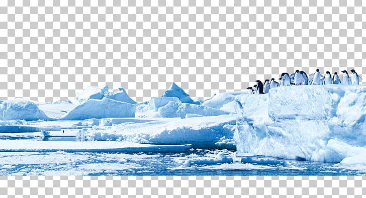 Penguin Antarctica Glacier Iceberg PNG, Clipart, Arctic, Arctic.