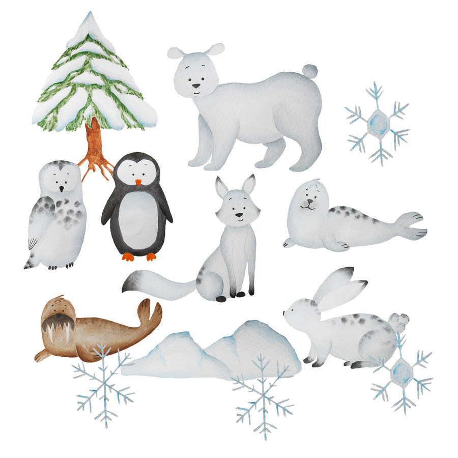 Download polar rabbit clipart Polar bear Arctic Clip art.