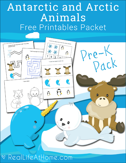 Free Antarctic and Arctic Animals Printables Packet for.