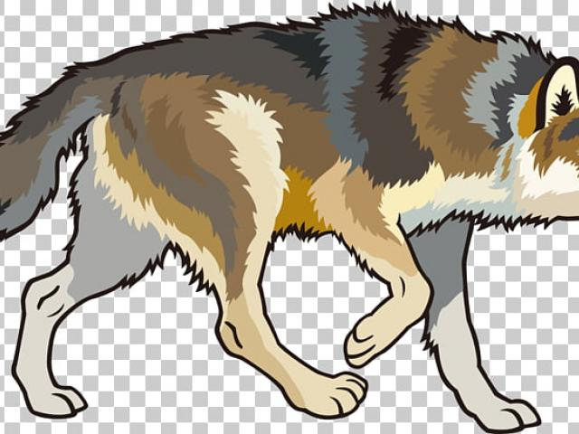 Free Arctic Wolf Clipart, Download Free Clip Art on Owips.com.