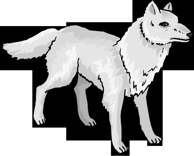 Arctic wolf Mexican wolf Arctic fox Clip art.