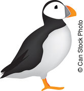 Puffin Stock Illustrations. 101 Puffin clip art images and royalty.