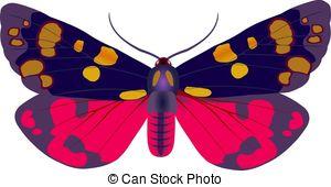 Arctiidae Stock Illustration Images. 7 Arctiidae illustrations.