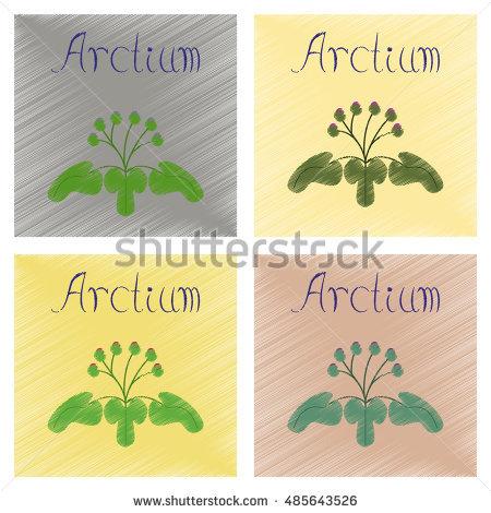 Arctium Stock Photos, Royalty.