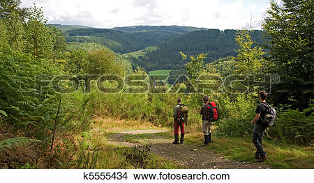 Stock Photo of Ardennes k5555434.