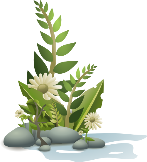 Free Plant Clipart.