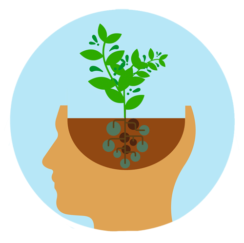 How to Develop a Growth Mindset In Schools.