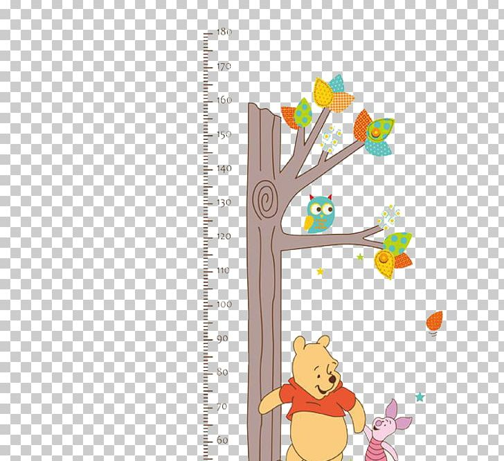 Growth Chart Wall Decal Child Sticker PNG, Clipart, Angle.