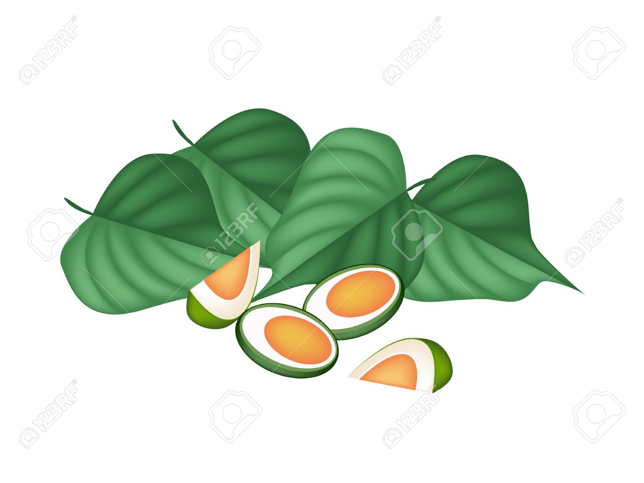 An Illustration Of Half Areca Nut And Betel Leaves, Asian.