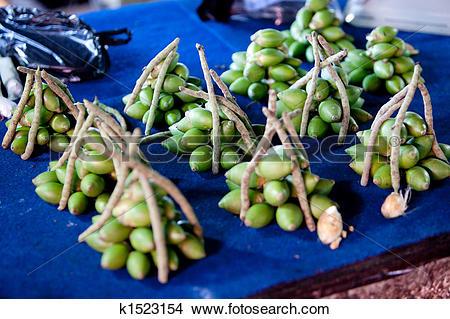 Stock Photo of Areca Nut k1523154.