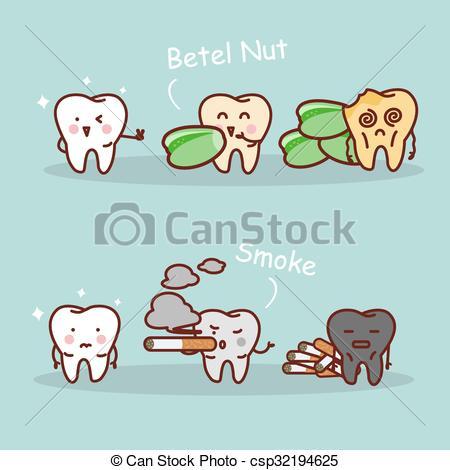 Betel nut Vector Clip Art Illustrations. 27 Betel nut clipart EPS.