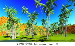 Arecaceae Stock Illustrations. 26 arecaceae clip art images and.