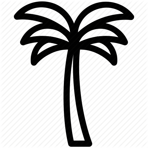 Arecaceae, date palm, date tree, palm, palm tree, tree icon.