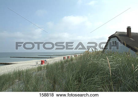 Pictures of Reed with house on beach, Fischland.