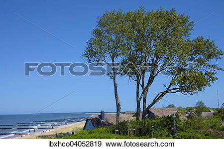 Stock Photograph of Thatched cottage on the high bank, Baltic Sea.