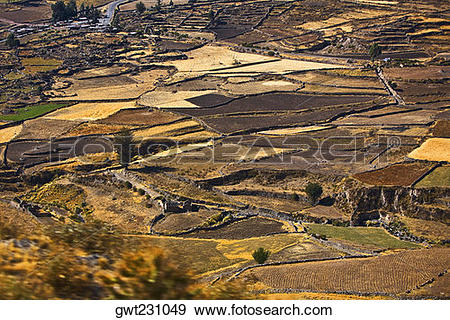 Stock Photograph of Aerial view of a field, Chivay, Arequipa, Peru.