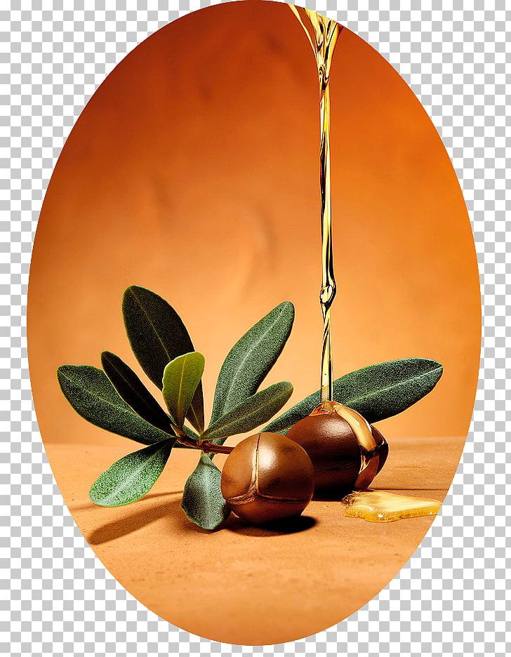 Argan oil Cosmetics Hair Care, oil PNG clipart.