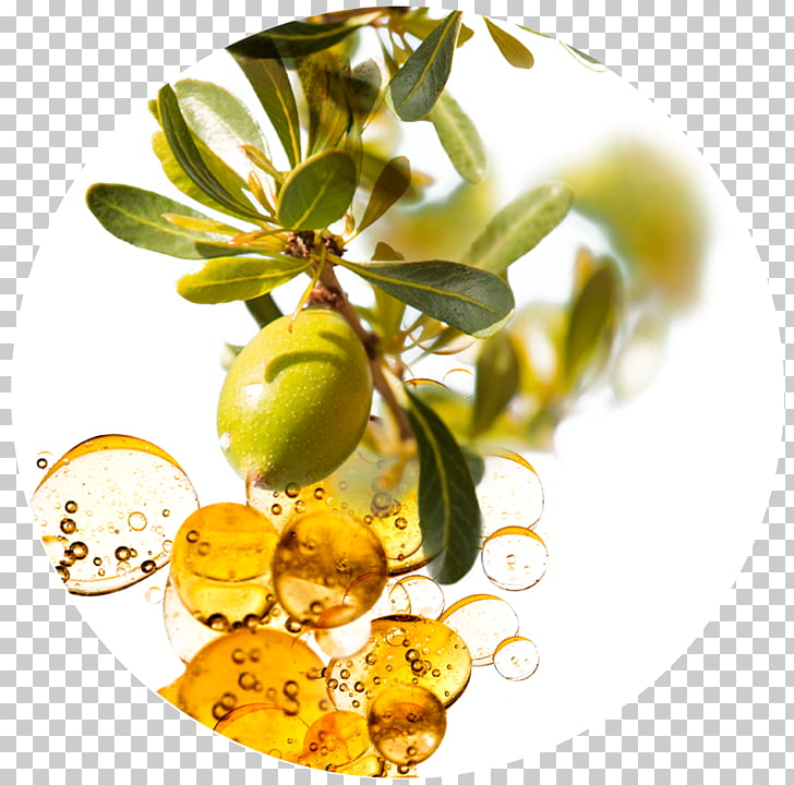 Argan oil Hair Care Skin care, hard work PNG clipart.