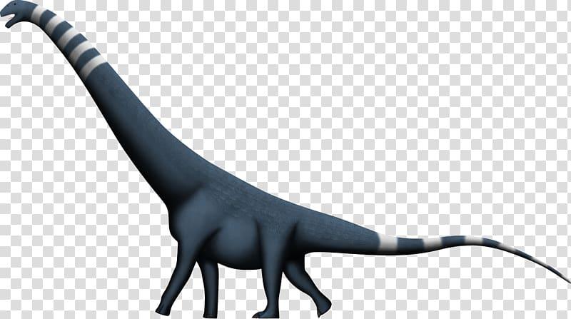 Puertasaurus Dinosaur size Alamosaurus Amphicoelias.