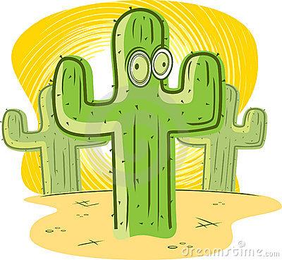 Cactus Stock Photos.