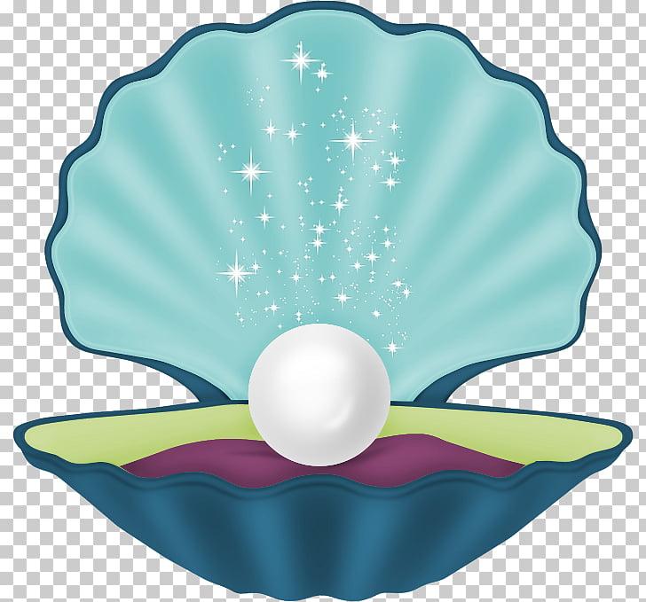 Seashell Mollusc shell Royal Dutch Shell Mermaid Desktop.