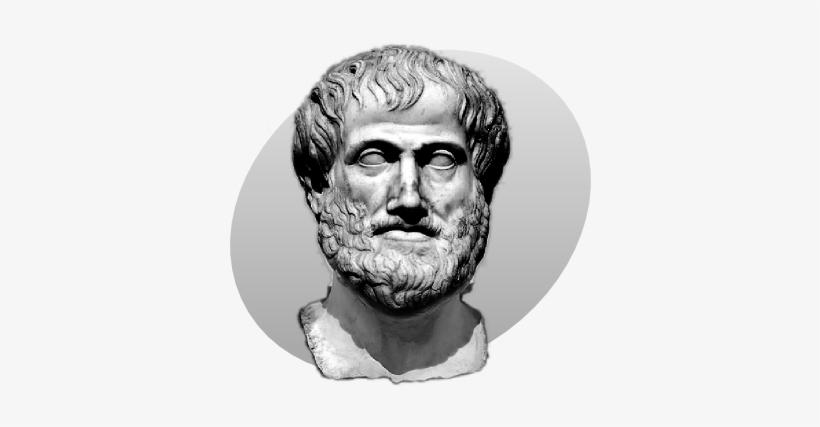 P Aristotle Grey.