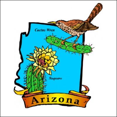 Bumper Sticker with Arizona, \