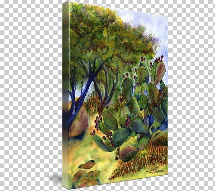 Biome Flora Landscape Fauna Painting PNG, Clipart, Arizona.