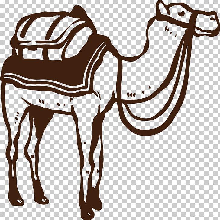 Camel Desert PNG, Clipart, Animals, Arizona Desert, Black.