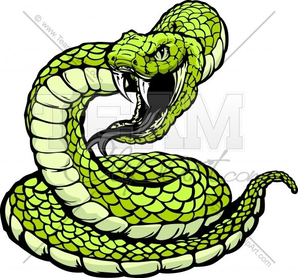 Striking Viper or Coiled Snake.