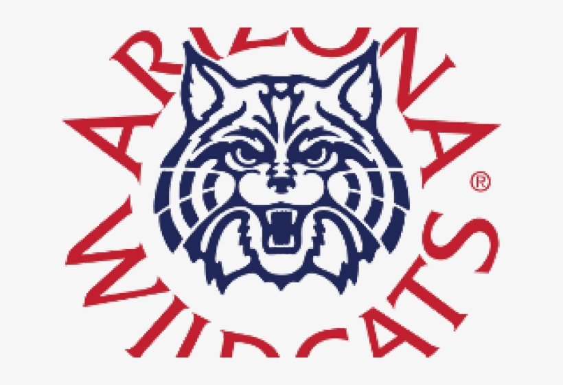 Wildcat Clipart Arizona.