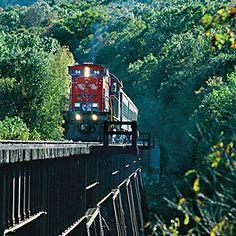 91 Best Arkansas/Missouri vacation images.