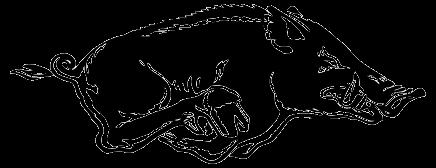Razorback Logo Outline.