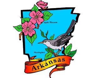 State Capital: Little RockState Bird: MockingbirdState Bird.