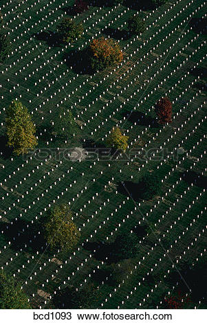 Stock Photo of Aerial view of grave markers at Arlington National.
